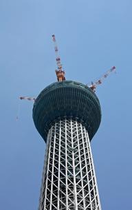 東京スカイツリーのつのの写真素材 [FYI00369866]