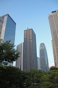 新宿高層ビル群タテの写真素材 [FYI00369869]