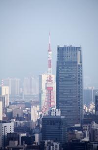 並ぶ東京名所の写真素材 [FYI00369873]