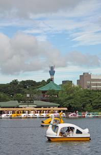 スワンボートと東京スカイツリーの写真素材 [FYI00369874]