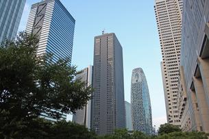 新宿高層ビル群ヨコの写真素材 [FYI00369887]