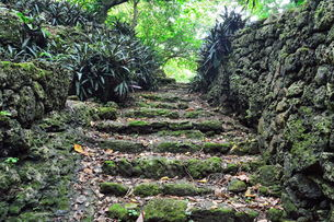 宮古島/史跡大和井(大和ガー)の石段の写真素材 [FYI00374782]