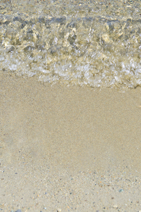 十和田湖畔 水辺の写真素材 [FYI00376560]