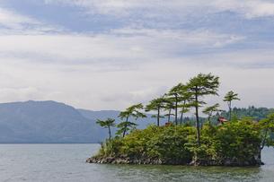 十和田湖 恵比須島の写真素材 [FYI00376597]