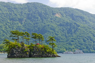 十和田湖 恵比須島の写真素材 [FYI00376609]
