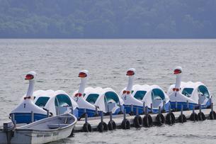 十和田湖 スワンボートの写真素材 [FYI00376610]