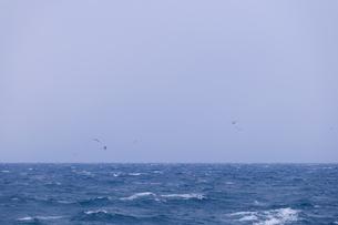 冬の陸奥湾の写真素材 [FYI00376745]