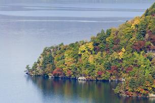 十和田湖の紅葉の写真素材 [FYI00376822]