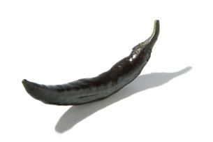 おもしろ野菜・黒唐辛子の写真素材 [FYI00377088]