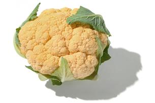 おもしろ野菜・ブロッコリーオレンジブーケの写真素材 [FYI00377091]