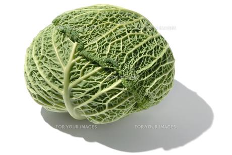 おもしろ野菜・サボイキャベツの写真素材 [FYI00377098]