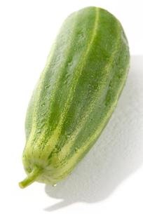 おもしろ野菜・玉造黒門越瓜の写真素材 [FYI00377107]