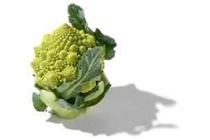 おもしろ野菜・ブロッコリーロマネスクの写真素材 [FYI00377114]