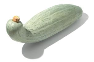 おもしろ野菜・すくなかぼちゃの写真素材 [FYI00377116]