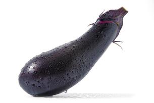 おもしろ野菜・千両茄子の写真素材 [FYI00377124]