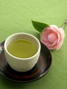 煎茶さざんかを添えての写真素材 [FYI00377129]