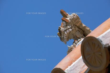 青空に赤瓦のシーサーの写真素材 [FYI00377148]