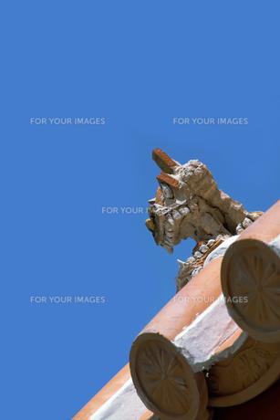 青空に瓦屋根のシーサーの写真素材 [FYI00377160]