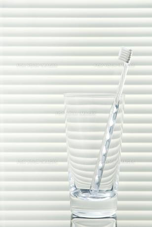 グラスと歯ブラシの素材 [FYI00377166]