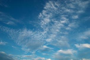 青空に巨人の背中の写真素材 [FYI00377184]