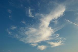 空を飛ぶ亀の様な雲の写真素材 [FYI00377188]