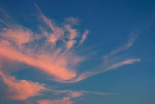 不死鳥の様な夕焼け雲の写真素材 [FYI00377191]