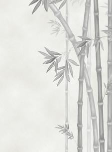 竹林の素材 [FYI00377350]