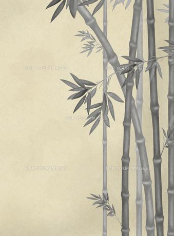 竹林の素材 [FYI00377351]