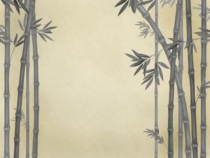 竹林の素材 [FYI00377353]