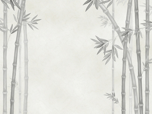 竹林の素材 [FYI00377354]