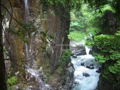 滝の風景の素材 [FYI00377387]