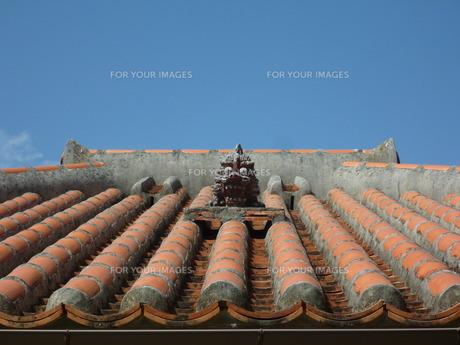 屋根の上のシーサーの写真素材 [FYI00377417]