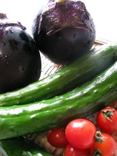 野菜の写真素材 [FYI00377434]