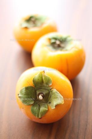 柿の写真素材 [FYI00377451]