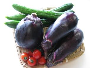 野菜の写真素材 [FYI00377453]
