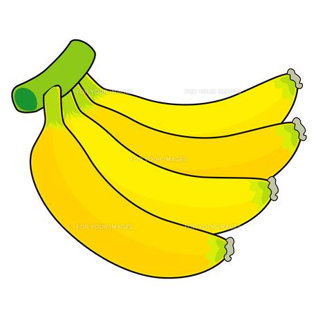 バナナの写真素材 [FYI00377505]