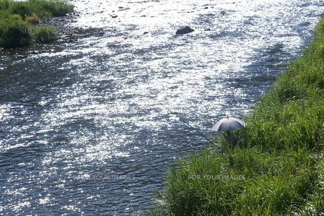 夏の川の写真素材 [FYI00377633]