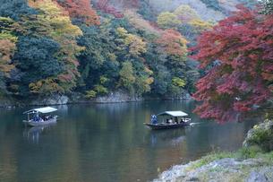 京都・秋「嵐山」Ⅰの写真素材 [FYI00377656]