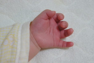 赤ちゃん-手の写真素材 [FYI00377826]