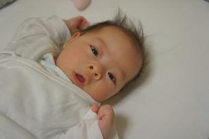 赤ちゃん-こんにちわの写真素材 [FYI00377828]