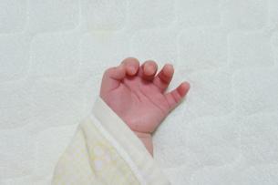 赤ちゃん-おてての写真素材 [FYI00377841]