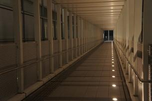 夜のオフィス街の写真素材 [FYI00377854]