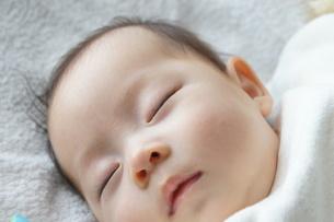 すやすや赤ちゃんの写真素材 [FYI00377864]