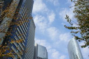 秋の高層ビル街の写真素材 [FYI00377865]