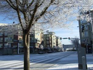 アメリカの雪景色の写真素材 [FYI00377867]