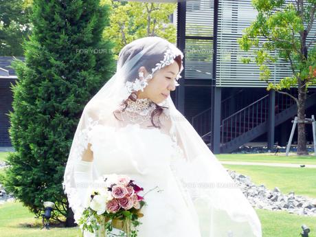 結婚式での白いドレスの写真素材 [FYI00377890]