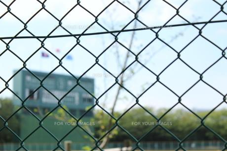 秋の高校野球の写真素材 [FYI00378335]