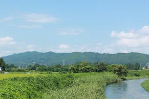 夏の小川の素材 [FYI00378446]
