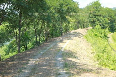 田舎の道の素材 [FYI00378452]