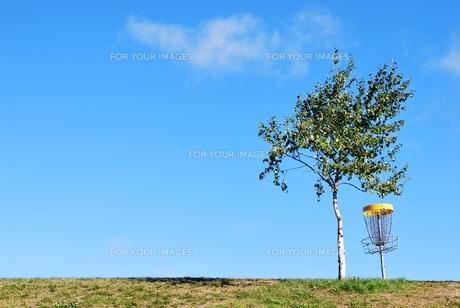 ディスクゴルフ場の写真素材 [FYI00378522]